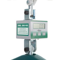 Allegro Hoist Weighing Device
